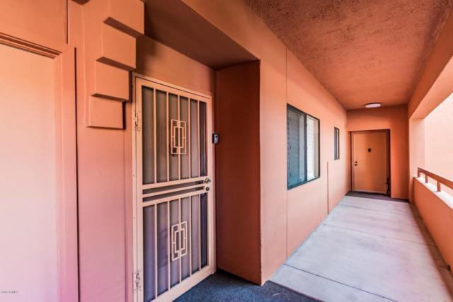 4303 E Cactus Road #229, Phoenix, AZ 85032 (MLS #5750430) :: Keller Williams Legacy One Realty