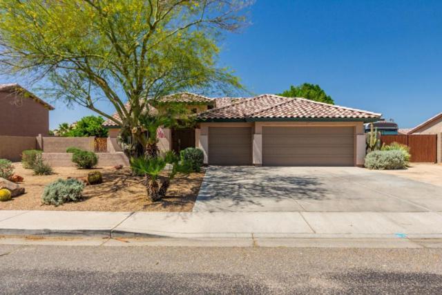 6942 W Villa Chula, Glendale, AZ 85310 (MLS #5750440) :: Occasio Realty