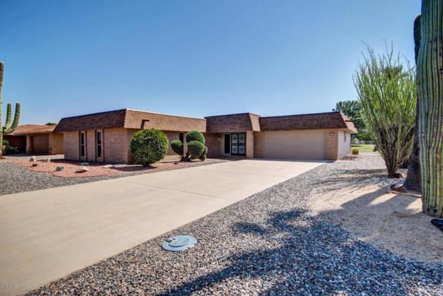 14421 N Cameo Drive, Sun City, AZ 85351 (MLS #5750497) :: Occasio Realty