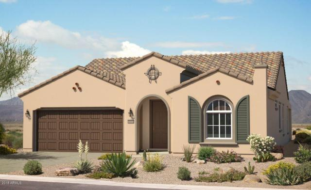27430 W Mohawk Lane, Buckeye, AZ 85396 (MLS #5750521) :: Santizo Realty Group