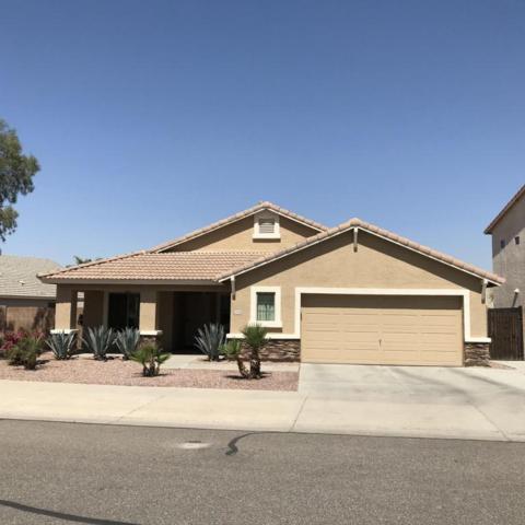 12370 W Hopi Street, Avondale, AZ 85323 (MLS #5750601) :: Occasio Realty
