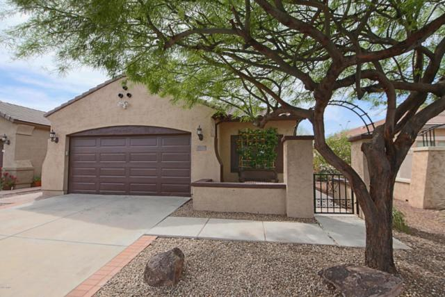 20474 N 262ND Avenue, Buckeye, AZ 85396 (MLS #5750616) :: Kortright Group - West USA Realty