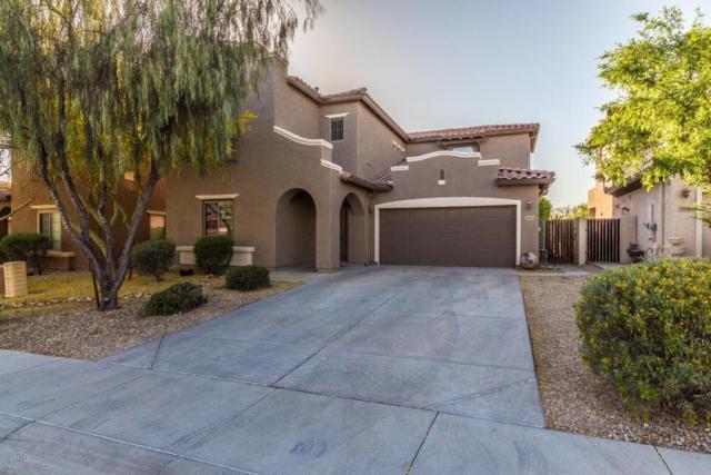 25514 N 54TH Lane, Phoenix, AZ 85083 (MLS #5750636) :: REMAX Professionals