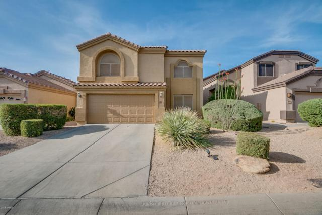4204 E Desert Sky Court, Cave Creek, AZ 85331 (MLS #5750759) :: Keller Williams Realty Phoenix
