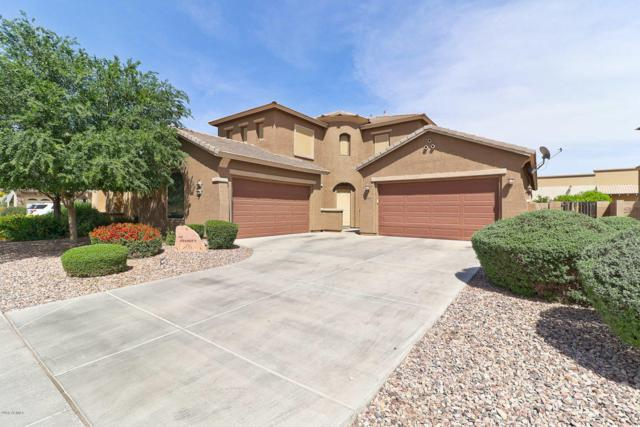 3035 S Bell Place, Chandler, AZ 85286 (MLS #5750794) :: Riddle Realty