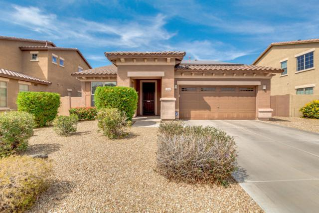 15042 W Turney Avenue, Goodyear, AZ 85395 (MLS #5750861) :: REMAX Professionals