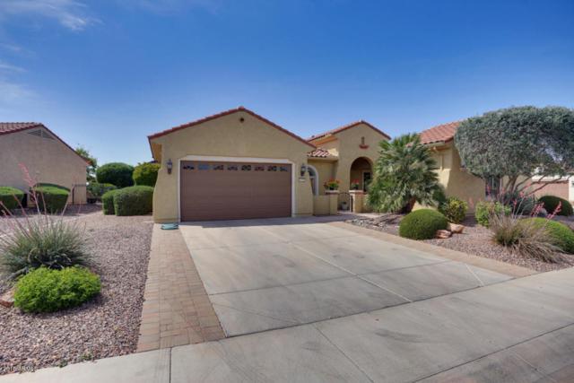 20582 N 266TH Avenue, Buckeye, AZ 85396 (MLS #5750862) :: Desert Home Premier