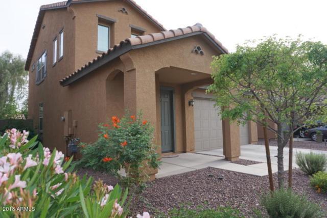 5625 E Alder Avenue, Mesa, AZ 85206 (MLS #5750865) :: Realty Executives