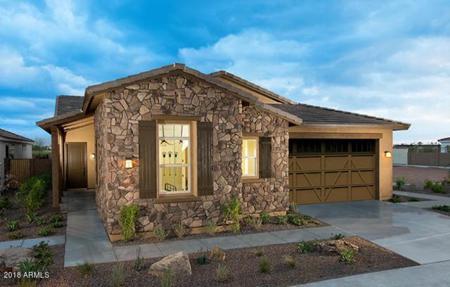 19750 W Heatherbrae Drive, Litchfield Park, AZ 85340 (MLS #5750866) :: Occasio Realty