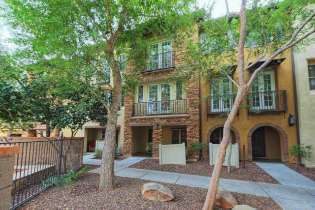 2444 E Montecito Avenue, Phoenix, AZ 85016 (MLS #5750887) :: Sibbach Team - Realty One Group