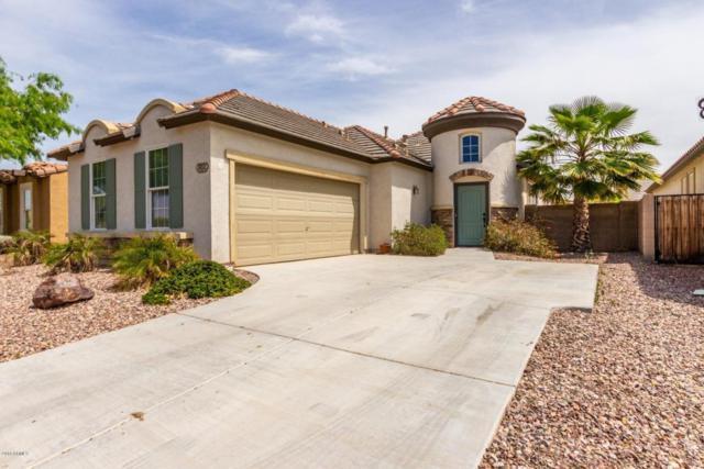 30331 W Leah Drive, Buckeye, AZ 85396 (MLS #5750903) :: The Sweet Group