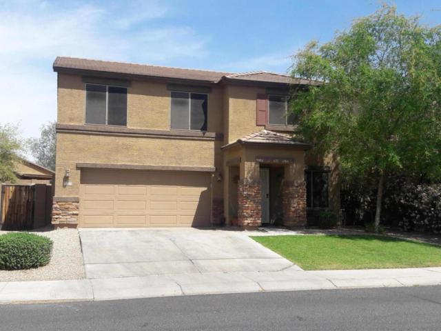 23790 W Lumbee Street, Buckeye, AZ 85326 (MLS #5750978) :: Occasio Realty
