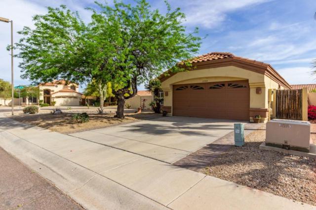 10264 S Hopi Lane, Goodyear, AZ 85338 (MLS #5751085) :: The Sweet Group