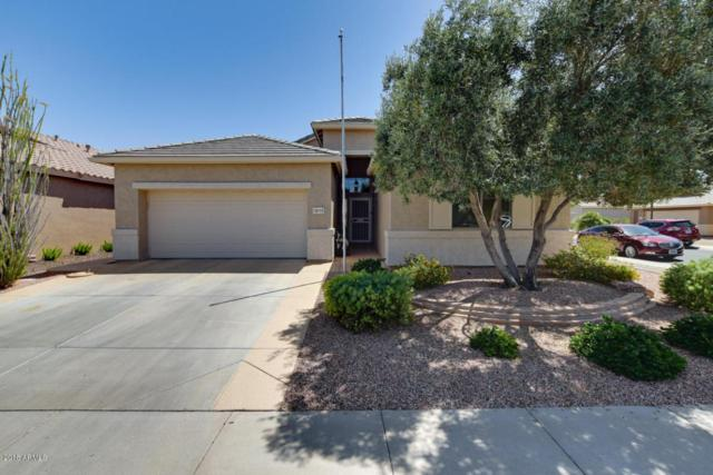 18165 W Camino Real Drive, Surprise, AZ 85374 (MLS #5751125) :: Occasio Realty