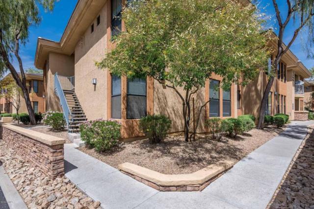 6900 E Princess Drive #1241, Phoenix, AZ 85054 (MLS #5751140) :: My Home Group