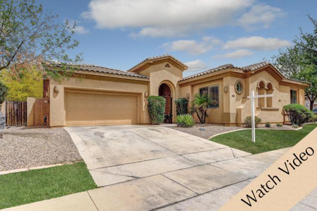 4689 S Bandit Road, Gilbert, AZ 85297 (MLS #5751203) :: The Jesse Herfel Real Estate Group