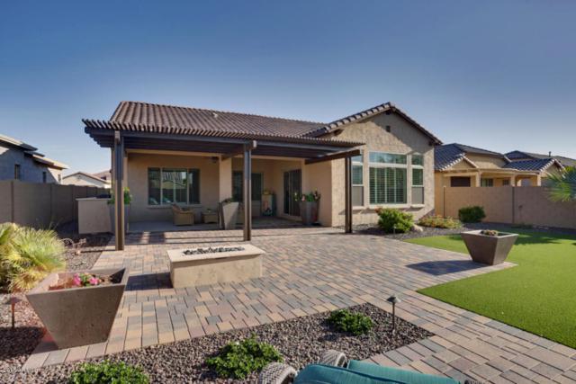 16743 W Monte Vista Road, Goodyear, AZ 85395 (MLS #5751350) :: The Sweet Group