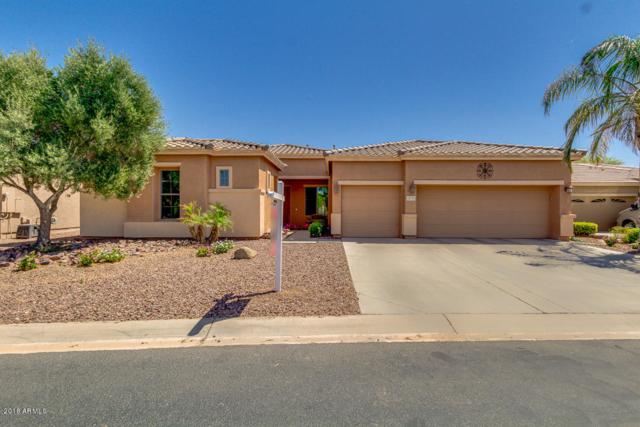 19775 N Puffin Drive, Maricopa, AZ 85138 (MLS #5751388) :: Kortright Group - West USA Realty