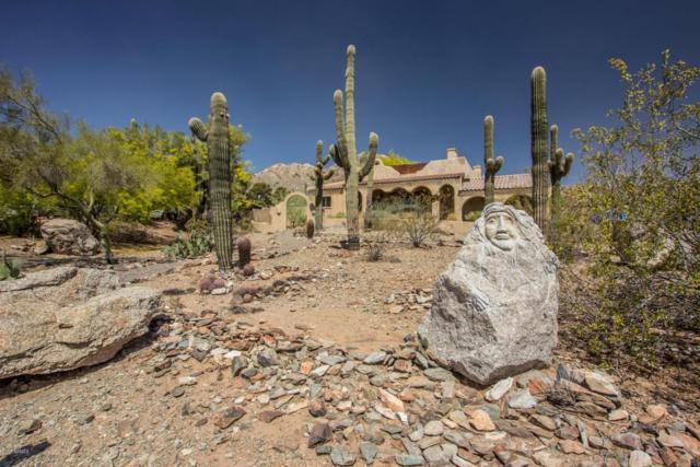2620 E Joan D Arc Avenue, Phoenix, AZ 85032 (MLS #5751508) :: Occasio Realty