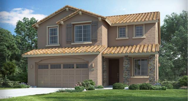 5415 W Hackamore Drive, Phoenix, AZ 85083 (MLS #5751531) :: REMAX Professionals