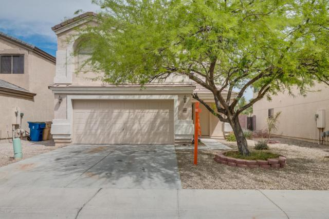 3852 W Naomi Lane, Queen Creek, AZ 85142 (MLS #5751568) :: The Wehner Group