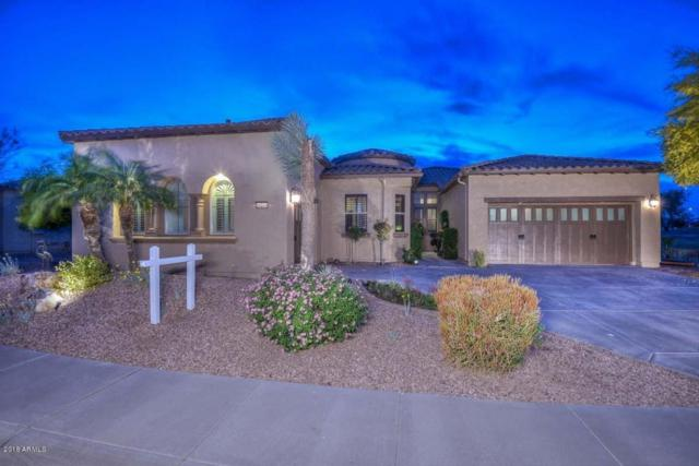 28278 N 123rd Lane, Peoria, AZ 85383 (MLS #5751596) :: Sibbach Team - Realty One Group