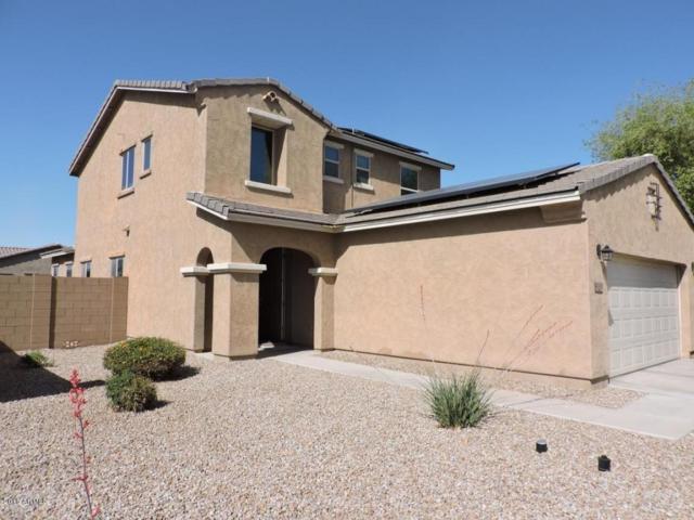41382 W Anne Lane, Maricopa, AZ 85138 (MLS #5751620) :: Occasio Realty