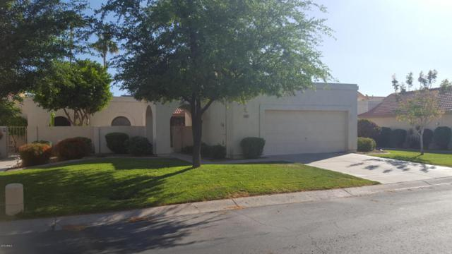 18821 N 94TH Avenue, Peoria, AZ 85382 (MLS #5751640) :: Desert Home Premier
