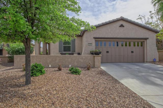 12667 W Maya Way, Peoria, AZ 85383 (MLS #5751674) :: Sibbach Team - Realty One Group