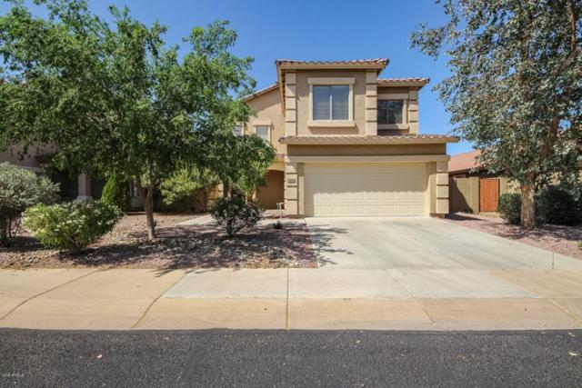 16846 W Tasha Drive, Surprise, AZ 85388 (MLS #5751710) :: Keller Williams Realty Phoenix