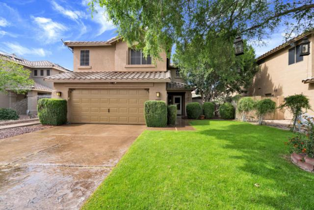 5208 W Campo Bello Drive, Glendale, AZ 85308 (MLS #5751835) :: Kortright Group - West USA Realty