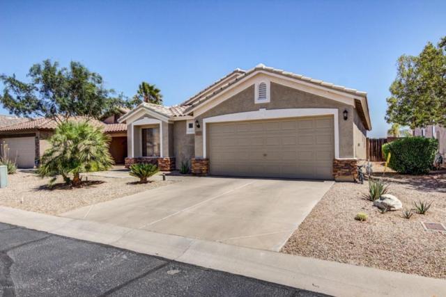 30379 N Coral Bean Drive, San Tan Valley, AZ 85143 (MLS #5751879) :: Sibbach Team - Realty One Group
