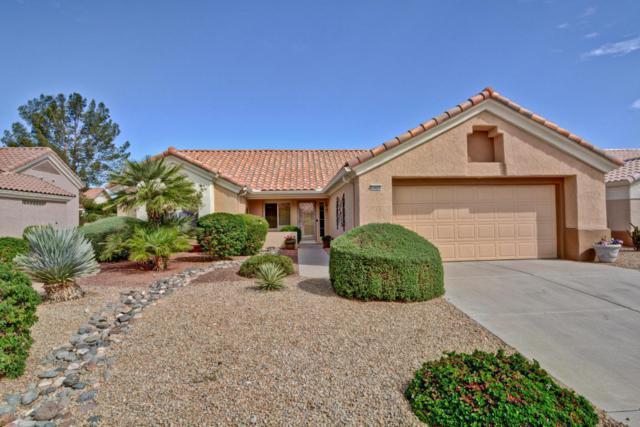 14430 W Wagon Wheel Drive, Sun City West, AZ 85375 (MLS #5751893) :: Occasio Realty