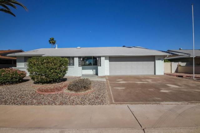 10825 W Sarabande Circle, Sun City, AZ 85351 (MLS #5751902) :: Santizo Realty Group