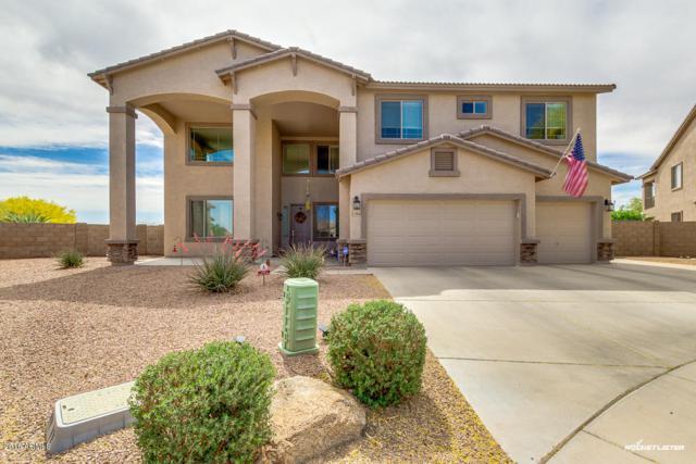 22026 N Cline Court, Maricopa, AZ 85138 (MLS #5751930) :: Occasio Realty