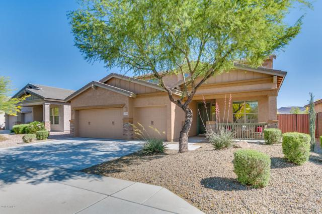 12556 W Chucks Avenue, Peoria, AZ 85383 (MLS #5751933) :: Occasio Realty