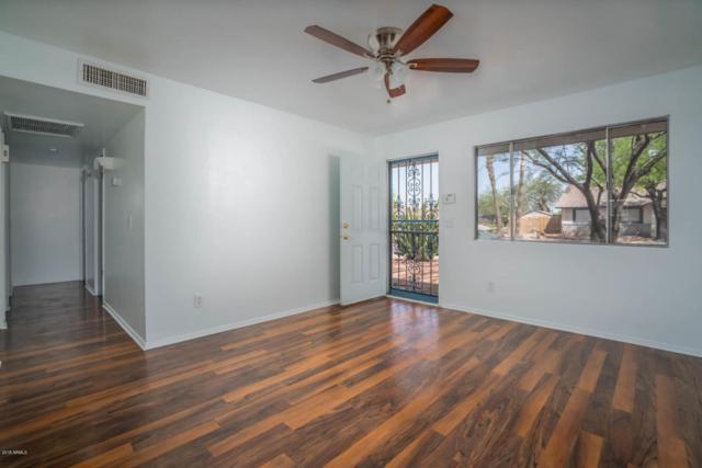 117 W Kerry Lane, Phoenix, AZ 85027 (MLS #5751960) :: Occasio Realty