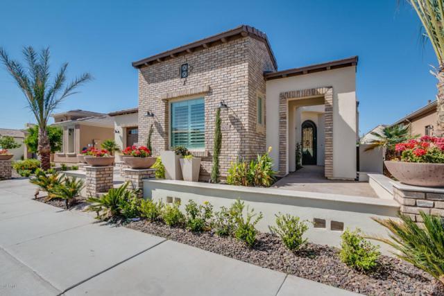 100 E Camellia Way, San Tan Valley, AZ 85140 (MLS #5751999) :: Yost Realty Group at RE/MAX Casa Grande