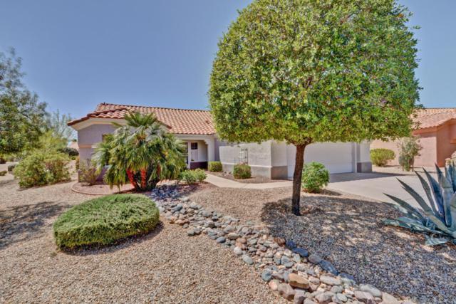 14458 W Wagon Wheel Drive, Sun City West, AZ 85375 (MLS #5752009) :: Occasio Realty