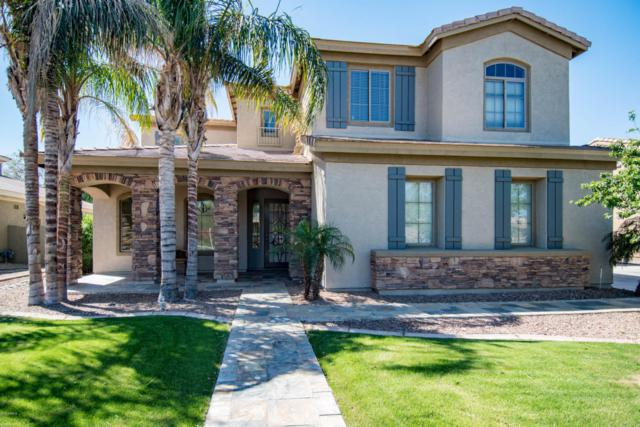 1233 E Canary Drive, Gilbert, AZ 85297 (MLS #5752069) :: Occasio Realty