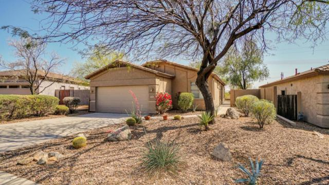 5284 S Casa Prieto Drive, Gold Canyon, AZ 85118 (MLS #5752089) :: Revelation Real Estate
