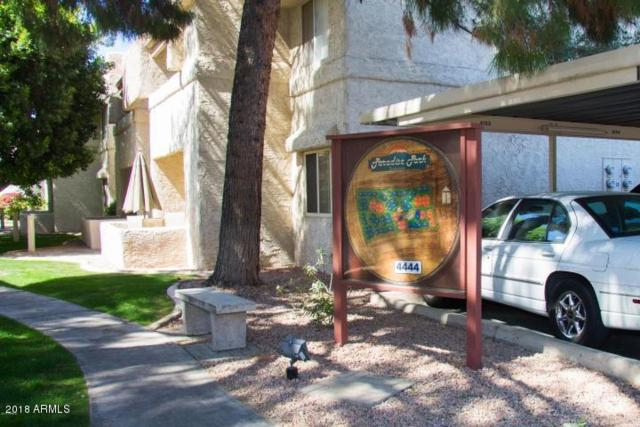4444 E Paradise Village Parkway N #167, Phoenix, AZ 85032 (MLS #5752136) :: Brett Tanner Home Selling Team