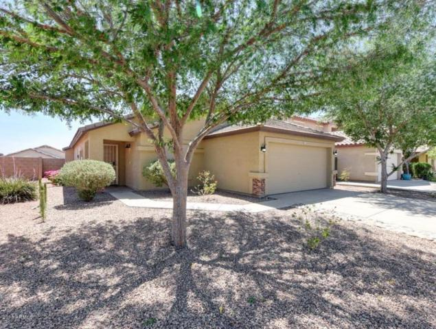 14751 W Watson Lane, Surprise, AZ 85379 (MLS #5752249) :: Occasio Realty