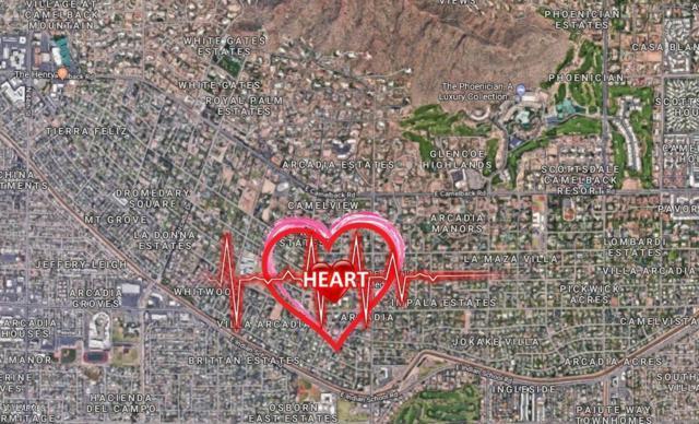 5470 E Calle Del Medio, Phoenix, AZ 85018 (MLS #5752250) :: Sibbach Team - Realty One Group