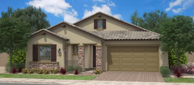 18423 N Falcon Lane, Maricopa, AZ 85138 (MLS #5752274) :: The Property Partners at eXp Realty