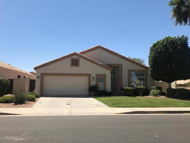 7203 E Lomita Avenue, Mesa, AZ 85209 (MLS #5752428) :: My Home Group