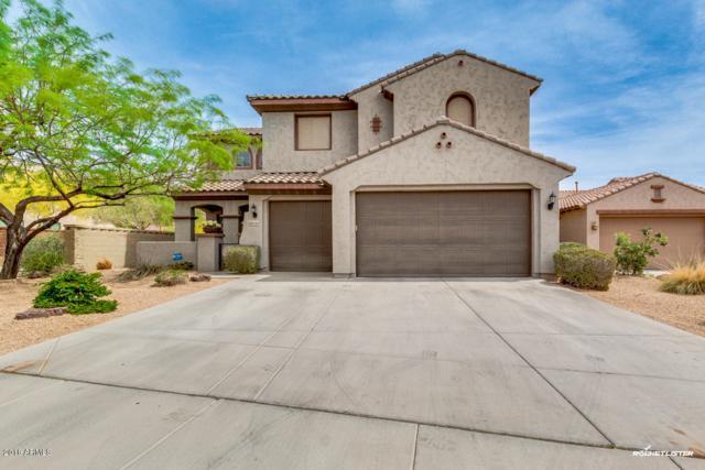 27237 N 90TH Avenue, Peoria, AZ 85383 (MLS #5752456) :: The Laughton Team