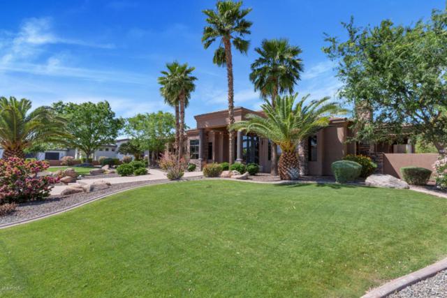 8066 W Expedition Way, Peoria, AZ 85383 (MLS #5752630) :: The Jesse Herfel Real Estate Group