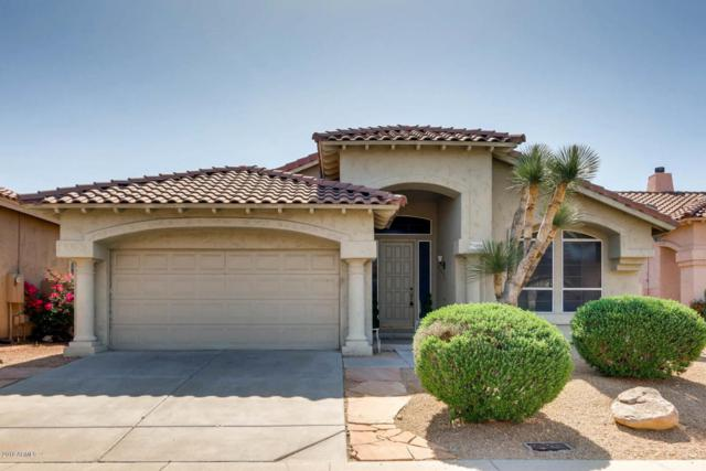 31023 N 44TH Place, Cave Creek, AZ 85331 (MLS #5752731) :: Kelly Cook Real Estate Group