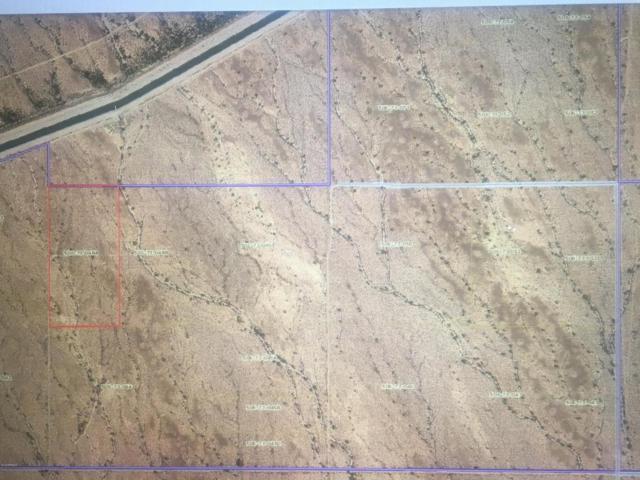 41900 W Mountain View Road, Tonopah, AZ 85354 (MLS #5752808) :: My Home Group